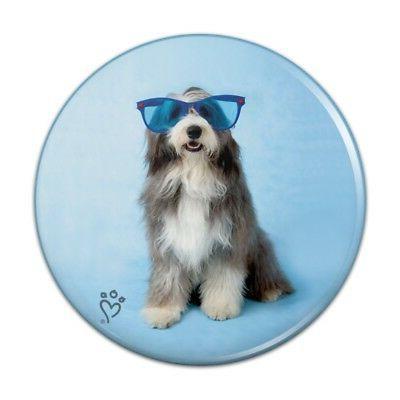 Sheepdog Bearded Collie Dog Sunglasses Kitchen Refrigerator